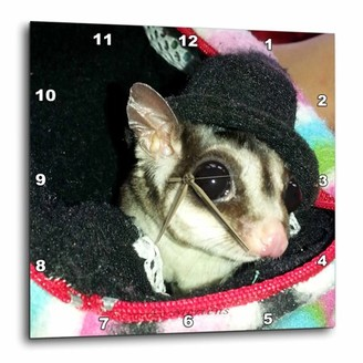 3dRose Sugar Glider Wearing a Top Hat Peaking Out of a Pouch, Wall Clock, 10 by 10-inch