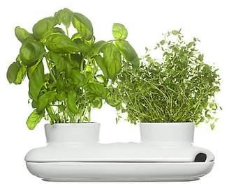 Sagaform Duo Herb Pot