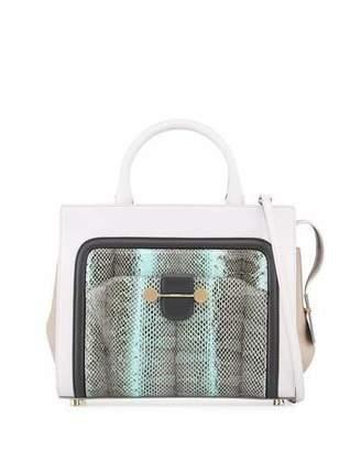 Jason Wu Daphne Watersnake & Leather Crossbody Tote Bag, Glass $2,995 thestylecure.com