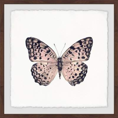Wayfair 'Pink and Black Butterfly' Framed Print