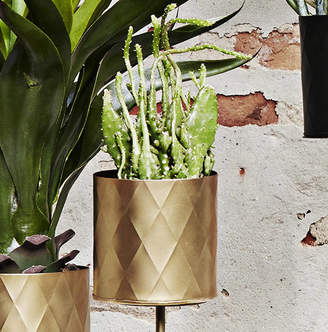 Equipment Posh Totty Designs Interiors Gold Harlequin Pattern Plant Pot