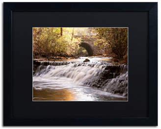 "Avon Jason Shaffer 'Avon Falls' Matted Framed Art - 20"" x 16"""
