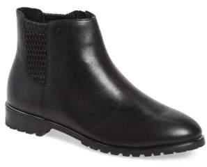 Sudini 'Fiona' Chelsea Boot
