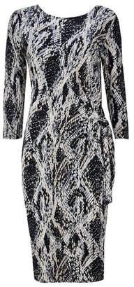Wallis Stone Animal Print Midi Dress