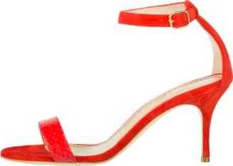 Manolo Blahnik Chaos Ankle Wrap Sandal