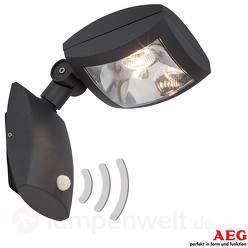 Guardiano - LED-Außenspot mit Bewegungsmelder