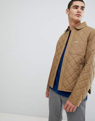 Lacoste padded quilted jacket in olive