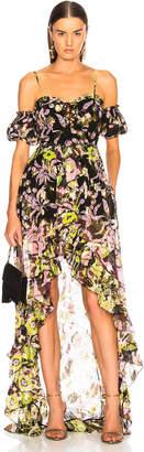 Dundas Fil Coupe Lace Front Maxi Dress