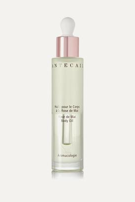 Chantecaille Rose De Mai Body Oil, 50ml - Colorless