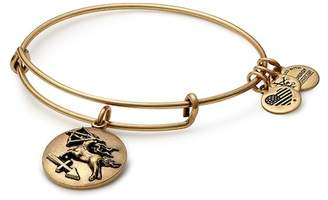 Alex and Ani Sagittarius Expandable Bracelet