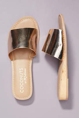 Matisse Coconuts by Sandal Slides
