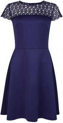 Dorothy Perkins Womens Navy Lace Skater Dress