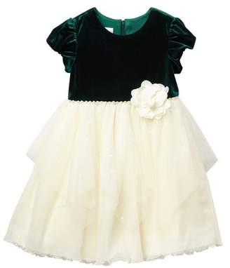 Iris & Ivy Velvet Short Sleeve Sheer Dress (Toddler Girls)