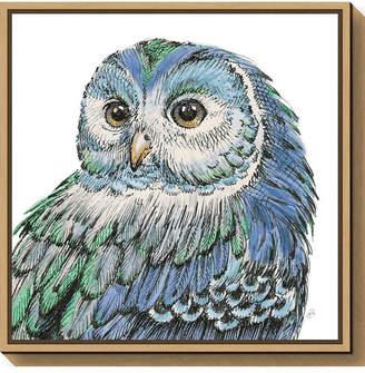 Amanti Art Beautiful Owls I Peacock Crop by Daphne Brissonnet Canvas Framed Art