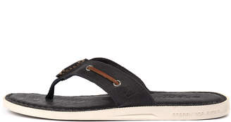 Sperry A/o sandal thong Navy Sandals Mens Shoes Casual Sandals-flat Sandals