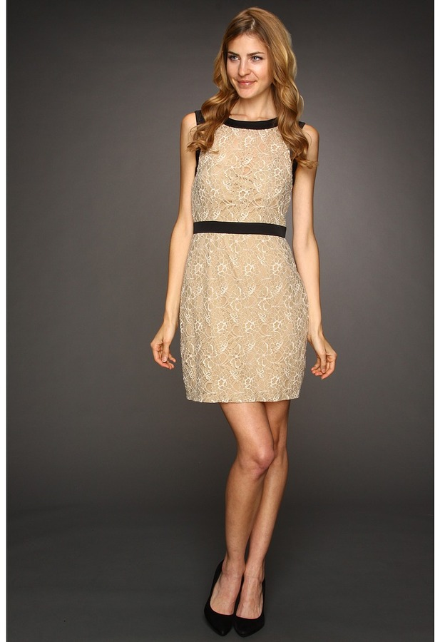 Max & Cleo Maddy Scalloped Lace Dress (Nude) - Apparel