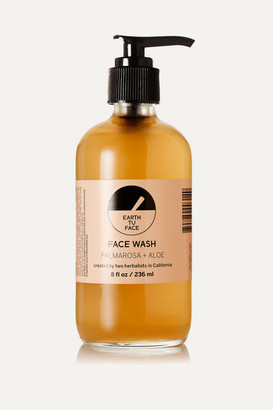 Earth Tu Face Face Wash, 236ml - one size