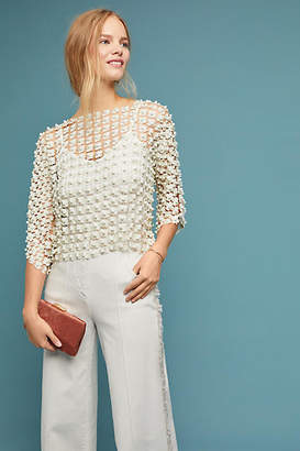 Anthropologie Moselle Lace Top