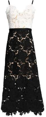 Catherine Deane Frida Two-Tone Guipure Lace Midi Dress