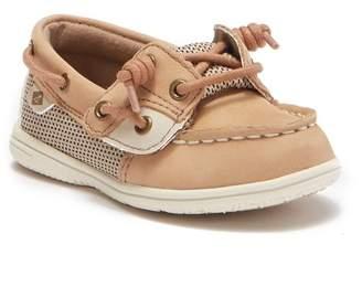 Sperry Shoresider Jr. Boat Shoe (Toddler & Little Kid)