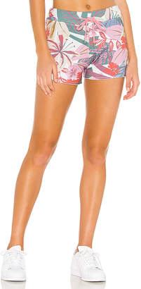 Sundry Floral Cut Off Shorts