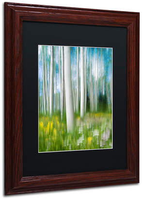"Michael Blanchette Photography 'Aspen Impression' Matted Framed Art, 11"" x 14"""