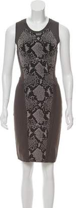 Diane von Furstenberg Franca Mini Dress