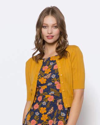 Clementine Cardi