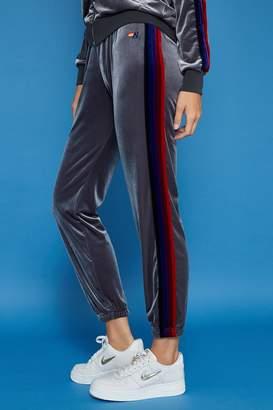 Aviator Nation Classic Velvet Womens Sweatpant
