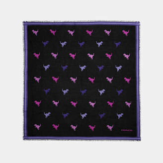 Coach Rexy Jacquard Oversized Square Scarf
