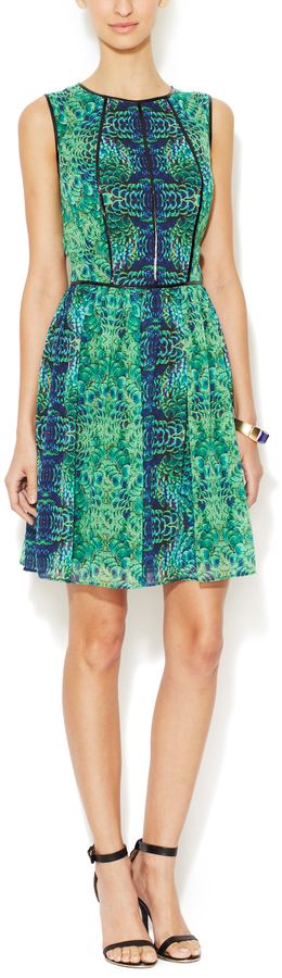 Cynthia Steffe Ginger Fit and Flare Dress