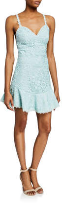 Alice + Olivia Rapunzel Sweetheart Sleeveless Floral Lace Dress