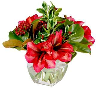 Jane Seymour Botanicals Amaryllis Holiday Bouquet Mixed Centerpiece in Glass Vase