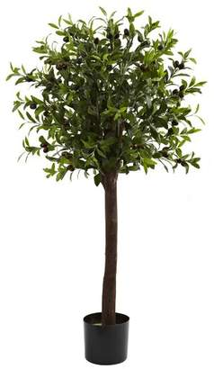 Co Darby Home Olive Tree Topiary in Pot