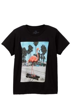 Kid Dangerous Flamingo Skater Tee (Big Boys)