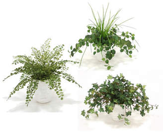 Distinctive Designs 3 Piece Assorted Greenery Desk Top Plant Set in Planter