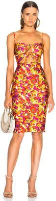 Adriana Degreas Fruits Print Short Dress