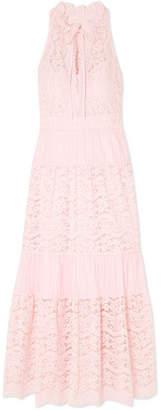 Temperley London Lunar Guipure Lace And Plissé Cotton-blend Dress - Pink