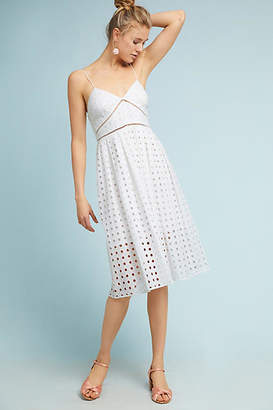 Donna Morgan Gridded Lace Petite Dress