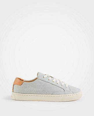 Ann Taylor Soludos Chambray Ibiza Classic Sneakers