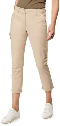 Casual Club The Collection - Beige Tapered Chinos