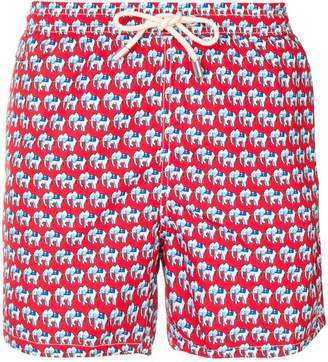 elephant swimming shorts