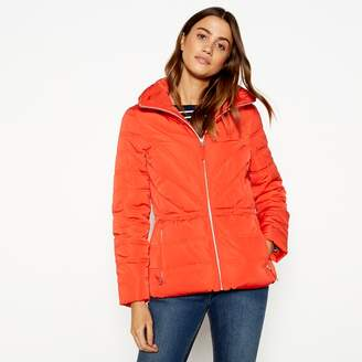 Casual Club The Collection - Orange Padded Hooded Jacket