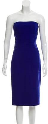Diane von Furstenberg Sleeveless Bodycon Dress