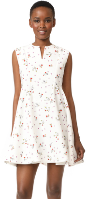 Carven Sleeveless Dress $790 thestylecure.com
