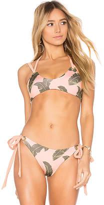 KYA Runway Bikini Top