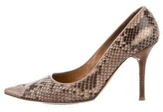 Valentino Snakeskin Pointed-Toe Pumps