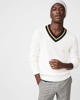 Express V-Neck Cricket Sweater