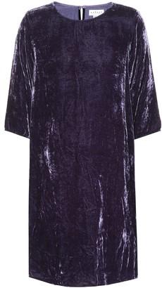 Velvet Prunella dress