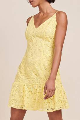 BB Dakota Gisele Lace Dress